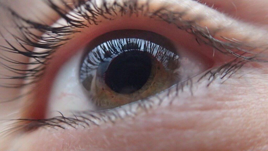 Human Eye, Glaucoma Awareness